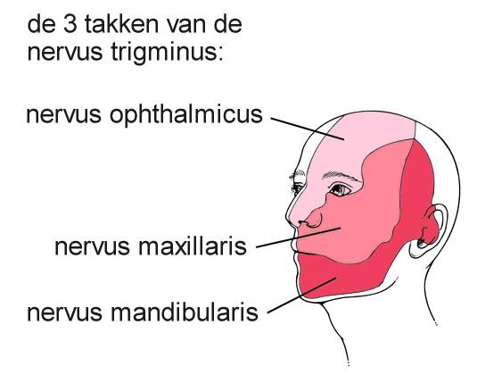Herpes zoster (varicella zoster, gordelroos)